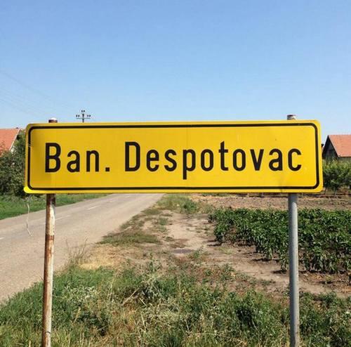 BANATSKIDESPOTOVAC